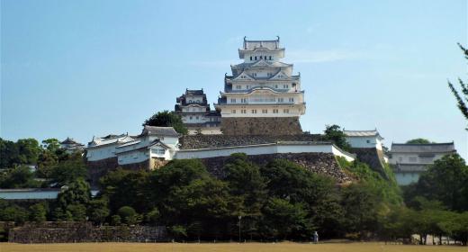 Leçon d'histoire au château d'Himeji, le héron blanc