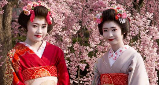 Les geisha au Japon