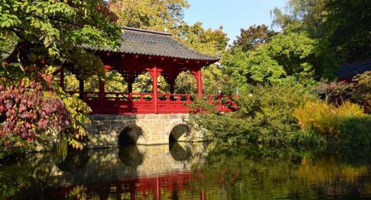 Le Japon : une destination asiatique à ne pas manquer