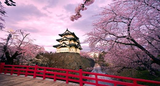 Tout ce qu'il faut savoir sur le voyage au Japon