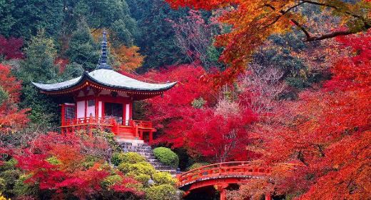 Quelques conseils pour organiser un voyage au Japon à moindre coût